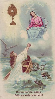 Free Catholic Holy Cards - Catholic Prayer Cards - St Therese of Lisieux - St. Joseph - Our Lady of Guadalupe - Sacred Heart of Jesus - John Paul the Great - Support Missionary work Blessed Mother Mary, Blessed Virgin Mary, Catholic Art, Religious Art, Roman Catholic, Ave Maris Stella, Vintage Holy Cards, Queen Of Heaven, Mama Mary