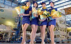 Skymark Airlines to introduce the Airbus & super-mini skirt Flight Attendants Joe Mcdonald, China World, Raised Eyebrow, Airline Flights, Girls Uniforms, Fukuoka, Cabin Crew, Sexy Stockings, Flight Attendant