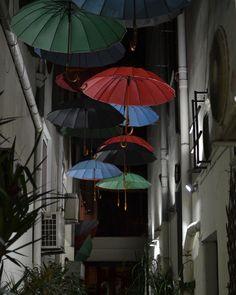 Umbrellas in a street in Exarchia, Athens (Greece)