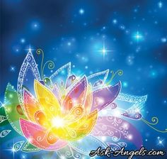 Ready to experience increased Divine Alignment in your life? Connect with Archangel Michael and Archangel Haniel to do just that! Free Meditation, Chakra Meditation, Guided Meditation, Spiritual Guidance, Spiritual Life, Archangel Haniel, Spiritual Paintings, Free Angel, Indigo Children