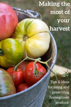 Lots of tips and ideas for how to store and preserve your homegrown fruit and vegetable harvest so you can enjoy them at other times of the year.