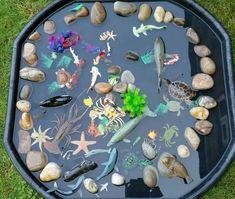 Tuff spot tray rock pool – to Eyfs Activities, Nursery Activities, Preschool Activities, Outdoor Activities, Family Activities, Summer Activities, Outdoor Games, Early Childhood Activities, Children Activities