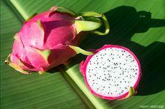 Pitaya, le fruit du dragon #Tahitiheritage #Tahiti #Fruits