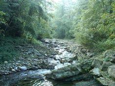 "a little stream named ""Trogola"""