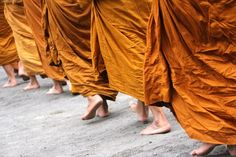 About the buddhist monks