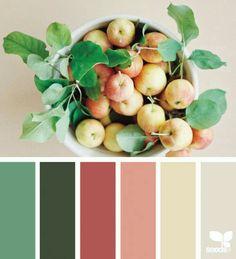 Color Schemes Colour Palettes, Colour Pallette, Color Combos, Design Seeds, Color Durazno, Color Palette Challenge, Diy Pallet Projects, Pallet Ideas, Color Psychology