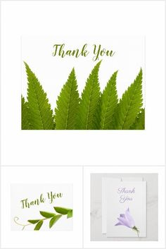 Photo Thank You Cards, Party Hats, Nature Photos, Your Cards, Kids Shop, Baby Shop