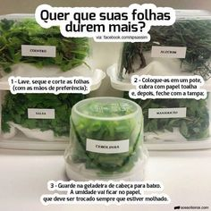 How to store leafy greens and herbs - Vegan Tips Healthy Life, Healthy Living, Cooking Time, Food Hacks, Vegan Recipes, Good Food, Food And Drink, Ethnic Recipes, Organize