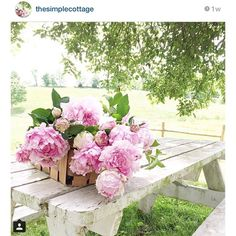 I had to share this image from the @thesimplecottage a basket full of my favorite flowers.