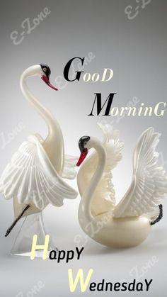 Good Morning Monday Messages, Good Morning Wednesday, Good Morning Happy, Good Morning Greetings, Good Morning Quotes, Assalamualaikum Image, Good Morning Beautiful Images, Good Morning Images Download, Good Thoughts Quotes
