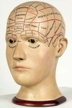 Carved and painted wood phrenology head.
