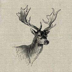 Téléchargement immédiat - Deer Head Vintage imprimable Image transfert pour tissu, papier, etc..