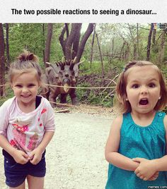 Two possible reactions
