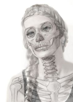 die 24 besten bilder von anatomie  anatomie anatomie