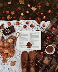 Picnic in autumn - Herbst / Autum / Fall - holidays Book And Coffee, Coffee Cozy, Happy Coffee, Coffee Girl, Coffee Coffee, Coffee Drinks, Coffee Shop, Autumn Aesthetic, Cozy Aesthetic
