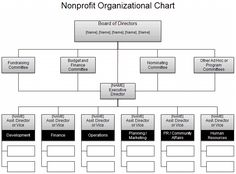 005 Traditional Nonprofit Organizational Structure Business