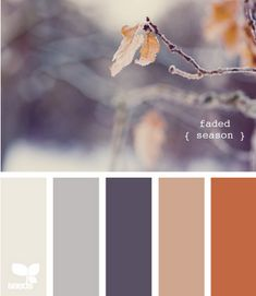 nice color schemes for the home: faded season. This would also make for a lovely fall wedding palette. Colour Pallette, Color Palate, Colour Schemes, Color Combinations, Pantone, Orange Gris, Orange Brown, Orange Color, Bedroom Orange