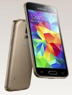 The Samsung Galaxy S5 mini.