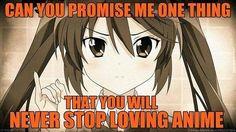 Never Stop loving Anime