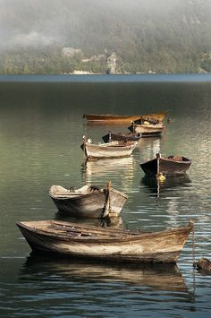 Boats in Italian waterscape - lovely palette