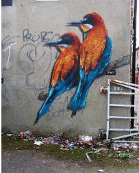 Graffiti. Art. Birds.