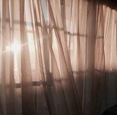 Morning sun ☀️☀️☀️