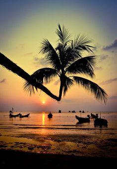 Sweet silhouettes , Koh Tao Beach Sunset, Thailand