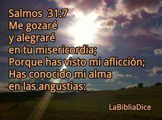 Salmos 31 : 7