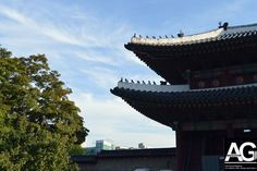 Changdeokgung - World Heritage