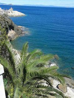 Porticciolo-Isola d'Elba