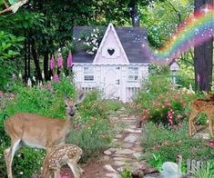 Uploaded by judgmentalll. Find images and videos about aesthetic and cottage cor on We Heart It - the app to get lost in what you love. Fairy Land, Fairy Tales, Cottage In The Woods, Nature Aesthetic, Cybergoth, Psychedelic Art, Faeries, Aesthetic Pictures, Scenery