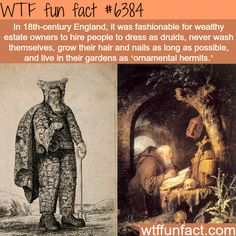 wealthy english people had ornamental hermits in - Weird Shirts - Ideas of Weird Shirts - Wealthy English people had ornamental hermits in their gardens FACTS Wtf Fun Facts, True Facts, Funny Facts, Random Facts, Crazy Facts, Random Trivia, 9gag Funny, Funny Shit, Random Stuff