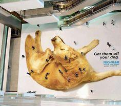 advertising - Brilliant, I just love this.