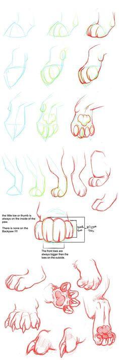 aprenda a desenhar a pata de uma cachorro