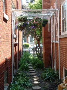 "Pergola over the deck? I particularly need to make this one for my ""Pinterest Alley."" My very small space has gutters, rain barrels, a chalkboard, a path, and more. All from Pinterest!"