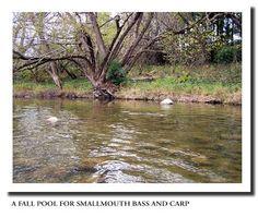 Fly Fishing: Smallmouth Bass. Smallmouth Bass Fishing Tips