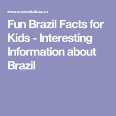 facts about the brazilian flag