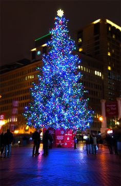 Pioneer Square at Christmas - Portland, Oregon