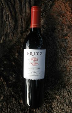 Fritz Malbec 2013 - wine from the Dry Creek Valley - In Mama Maggie's Kitchen