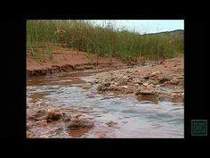 The Red River - Texas Parks and Wildlife [Official] - YouTube