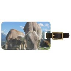Cute cows in Austria Tag For Bags