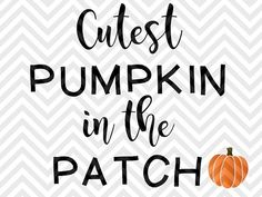 Cutest Pumpkin in the Patch Halloween Fall SVG file - Cut File - Cricut projects - Silhouette projects by KristinAmandaDesigns