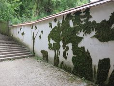 moss graffiti - Buscar con Google