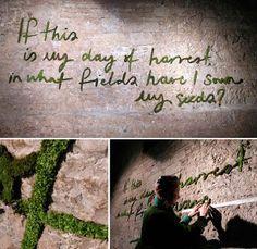 El Rincón Vintage de Karmela: Graffitis de musgo, o como llevar el arte a su estado más natural.