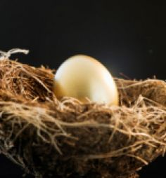 Investing - Protecting Your Assets – Ekkehart Hassels Weiler – Medium – WeGoBusiness - Top business stories from around the internet Business Stories, Saving For Retirement, Investing, Politics, America, Drop, Writing, Digital, Medium
