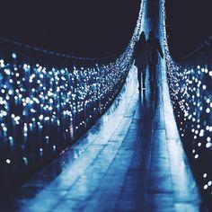 Capilano Suspension Bridge light-up