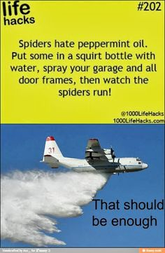 Spiders Hate Peppermint Oil  Put some in a squirt bottle with water, spray your garage and all door frames, then watch the spiders run.  That should be enough.  (A tanker plane dropping its payload)
