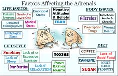 Debunking the Myth of Adrenal Fatigue