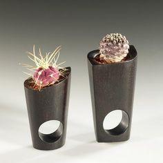 Cactus Jewelry by Barbara Uderzo #Jewelry #Cactus #Barbara_Uderzo