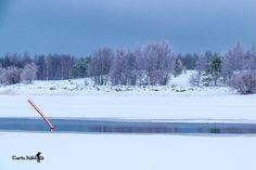 Finland, Snow, Outdoor, Outdoors, Outdoor Living, Garden, Eyes